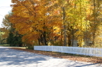 Fall colors and white picket fence in Cedarville. 