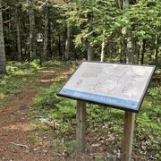 Interpretive signs tell the Maywood story along the .9 trail