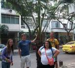 Shannon Scott, Priscilla Oddo, Ben Montgomery, and Nate Zielinski pose with one of the many palm trees that lined Rio's sidewalks. Some trees were located in the middle of the sidewalk, causing pedestrians to walk around!