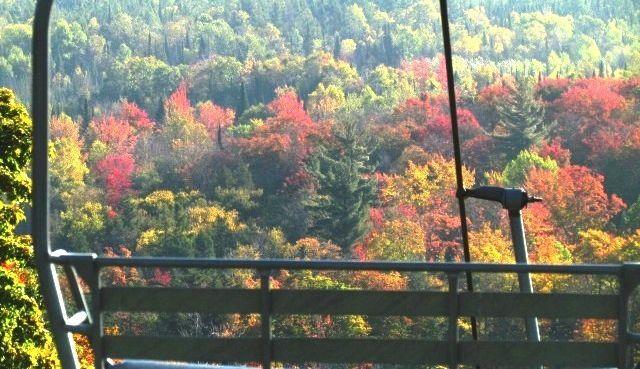 Treetops Oktoberfest
