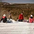 Ski Treetops