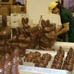 The Chocolat Factory