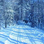 Groomed Cross Country Ski Trails