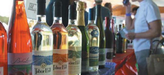 20th Annual Hopps Of Fun Beer & Wine Festival
