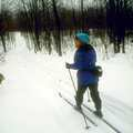 A Nordic skier on Cadillac Pathway.