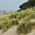 Dunes and Lake Michigan shoreline at Kirk Park.