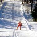 A skate skier at Forbush Corner.