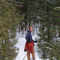 A cross-country skier at Petoskey State Park.