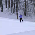 A Nordic skier at Birchwood Farms.