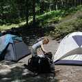 White Pine Campground, a walk-in facility.