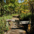 A boardwalk along the Hoyt G. Post Trail.