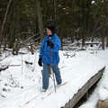 Cross-country skier at Young State Park.