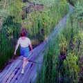 Following a boardwalk at Skegemog Swamp Pathway.