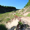 The trail to Old Baldy Dune.