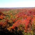 Fall colors in the Jordan Valley.