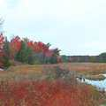 October is a great time to hike Sabin Pond Trail.