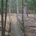 A foot bridge along the Otter Creek Loop.