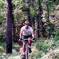 A mountain biker at Pine Baron Pathway.