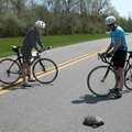 Cyclists pause to admire a turtle at Oakwoods Metropark.