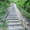 Trail steps on the way to Old Baldy.