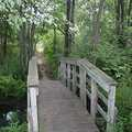 A foot bridge at Sorensen Park near Holly.