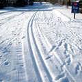 Forbush Corner offers the best groomed tracks in Michigan.