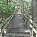 A boardwalk along the Mud Lake Trail.