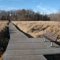 Boardwalk across the wetlands aqt Lake Lansing North.