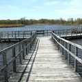 Boardwalk at Crosswinds Marsh County Park.