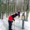 A Nordic skier studies a trail map at Algonquin.