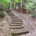 The trail and stairways at McCune Nature Preserve.