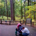 A family pauses at the Monarch white pine.