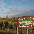 Yuba Creek Natural Area.