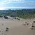 Open dunes at Zetterberg Preserve