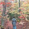 A fall hiker at Pyatt Lake Nature Preserve.