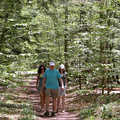 Hikers on the Shauger Hill Trail.