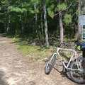 Mountain biking at Sand Lakes is mostly on old two-tracks.