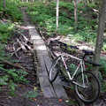 Mountain bike trail at Avalanche Preserve.