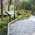 The boardwalk along Wolf Creek Trail.