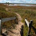 Sandy Hook Trail.