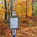 Fall colors on the Cadillac Pathway.