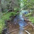 Wolf Creek seen along Wolf Creek Trail.