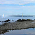 Mackinac Bridge can be seen from The Headlands.