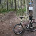 Mountain biking is popular on the Lake Ann Pathway.
