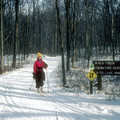 A Nordic skier in Independence Oaks County Park.