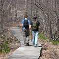 Hikers follow a boardwalk at Proud Lake.