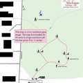 Beal Tree Plantation trail map