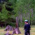 A mountain biker in a stump field along Deer Run Trail.
