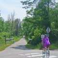 The first portion of the Betsie Valley Trail is pavd.