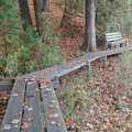 A boardwalk along Sabin Pond Trail.